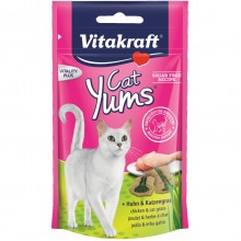 VITAKRAFT - CAT YUMS 40 GR